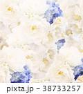 花 壁紙 バラのイラスト 38733257