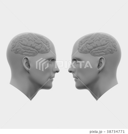 two male heads with brains facing each otherのイラスト素材 38734771