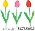 花 チューリップ 黄色のイラスト 38735058
