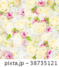花 壁紙 バラのイラスト 38735121