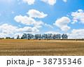 空 青空 風景の写真 38735346