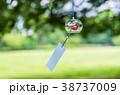 風鈴 夏 風物詩の写真 38737009