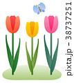 春 チューリップ 花のイラスト 38737251