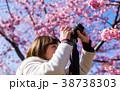 写真 撮影 桜の写真 38738303