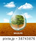 野生動物 野生生物 水のイラスト 38743876