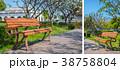 Beautiful wooden garden chair in the garden 38758804