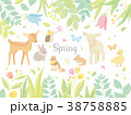 春の動物イラスト 38758885