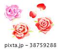 バラ 薔薇 花のイラスト 38759288