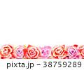 バラ 薔薇 花のイラスト 38759289