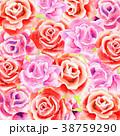 バラ 薔薇 花のイラスト 38759290