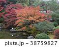 庭園 じゃり 砂利の写真 38759827