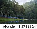 森林 林 森の写真 38761824
