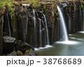 すがすがしさ 熱帯雨林 森林の写真 38768689