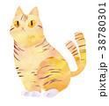 猫又・トラ猫 38780301