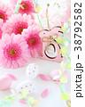 ピンクのガーベラ イースターエッグ 38792582