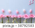 ピンクのガーベラ イースターエッグ 38792583