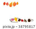 秋のフレーム_紅葉、枯葉 38795817