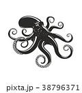 タコ たこ 蛸のイラスト 38796371
