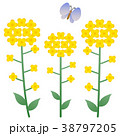 春 ベクター 花のイラスト 38797205