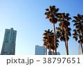 椰子の木のある横浜の都市風景 38797651
