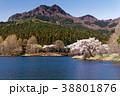 宇都宮森林公園の桜と古賀志山 38801876