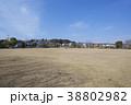 空 青空 公園の写真 38802982