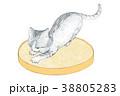 イラスト 動物 ネコのイラスト 38805283
