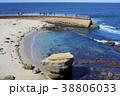 海岸 海 砂浜の写真 38806033