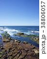 アメリカ合衆国カリフォルニア州サンディエゴのラホヤの海岸のアザラシの群れ 38806057