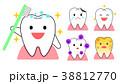 歯 アイコン ベクターのイラスト 38812770