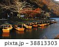 11月秋 紅葉の嵐山の朝  京都の秋景色 38813303