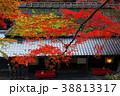 11月秋 平野屋 -京都嵯峨野の茶屋- 38813317