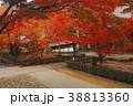 11月秋 紅葉の永源寺 滋賀の秋景色 38813360