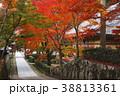 11月秋 紅葉の永源寺 滋賀の秋景色 38813361