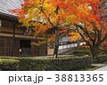 永源寺 臨済宗 紅葉の写真 38813365