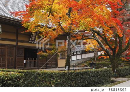 11月秋 紅葉の永源寺 滋賀の秋景色 38813365