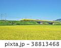 稲田とドクターイエロー 38813468