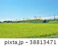 稲田とドクターイエロー 38813471
