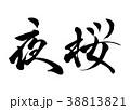夜桜 桜 筆文字のイラスト 38813821