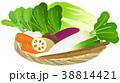 野菜 収穫物 竹ざるのイラスト 38814421