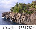 城ヶ崎 城ヶ崎海岸 海岸の写真 38817824