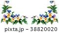 フレーム 花 水彩のイラスト 38820020