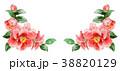 花 水彩 フレームのイラスト 38820129