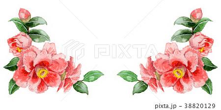 水彩で描いたピンクの山茶花の下部フレーム素材 38820129