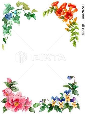 水彩で描いた四季の植物のフレーム素材 38820281