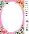 水彩で描いた四季の植物のフレーム素材 38820282