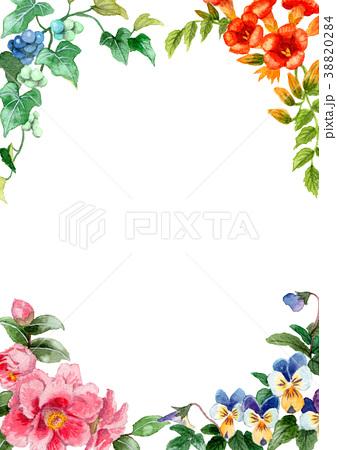 水彩で描いた四季の植物のフレーム素材 38820284