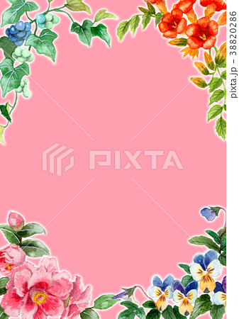 水彩で描いた四季の植物のフレーム素材 38820286