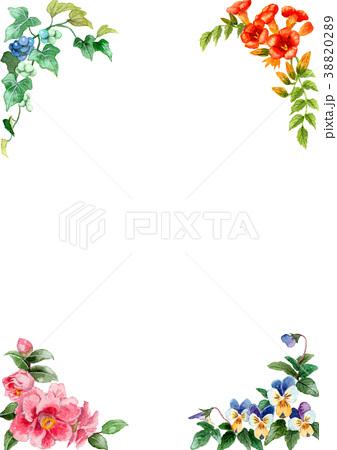 水彩で描いた四季の植物のフレーム素材 38820289