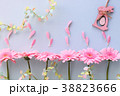 ピンクのガーベラ イースター 38823666